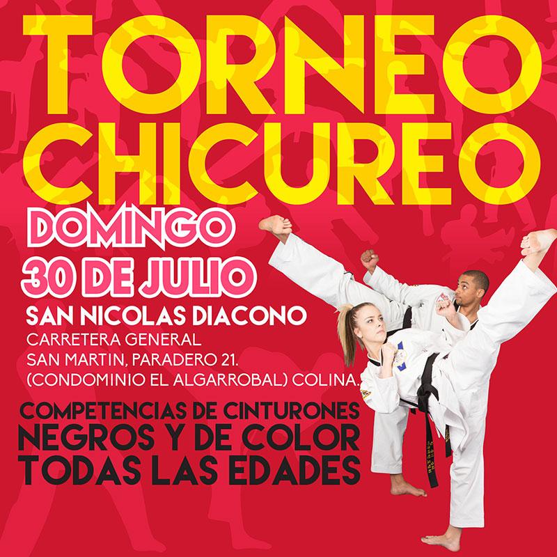 Torneo Regional de Taekwondo ATA - Chicureo 2017